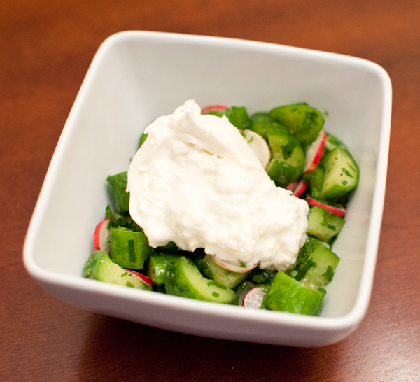 cucumber & radish salad with burrata | life with the lushers